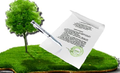 Сопровождение в получении земельного участка в Департаменте земельных ресурсов